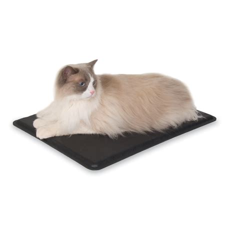 outdoor heat ls amazon amazon com k h manufacturing extreme weather kitty pad