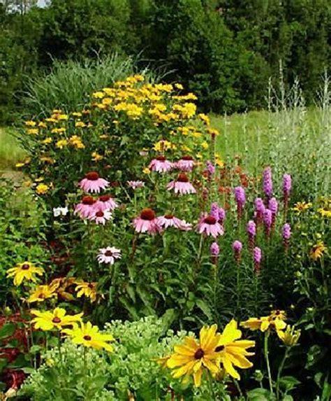 17 best ideas about perennial gardens on pinterest flower bed designs flower garden design