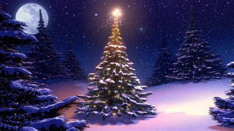 imagenes navidad bonitas 225 rbol de navidad