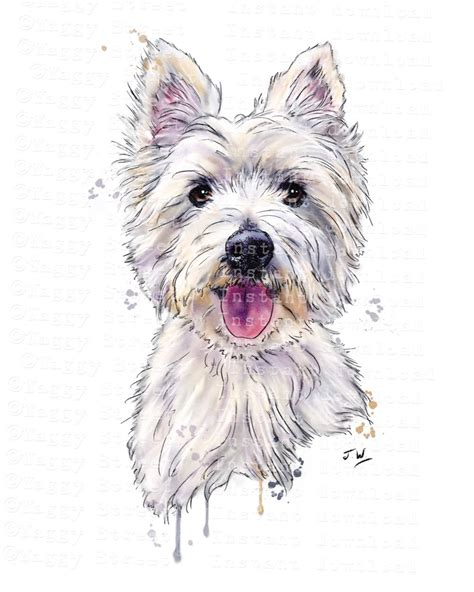 watercolor tattoo belgie westie clipart instant digital pen ink