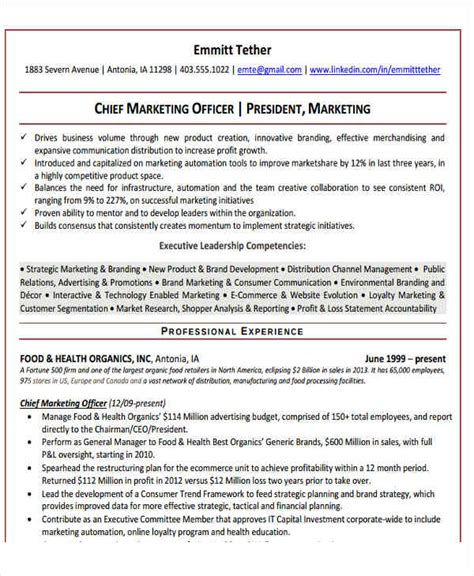Chief Marketing Officer Sle Resume by 27 Marketing Resume Templates In Pdf Free Premium Templates