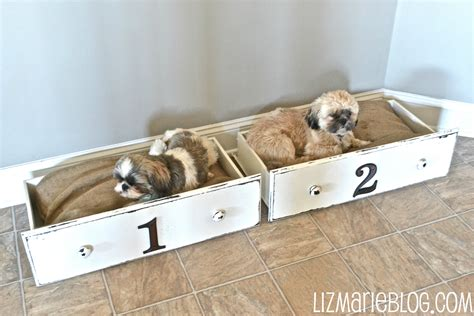 diy dog beds 16 adorable diy pet bed ideas style motivation