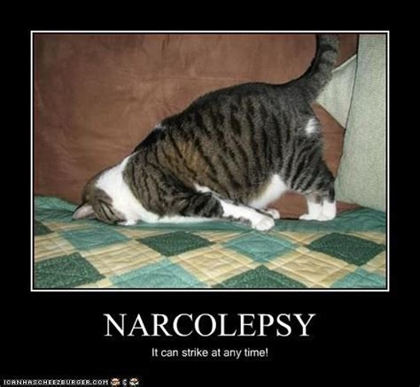 Narcolepsy Meme - narcolepsy trying to wake up pinterest