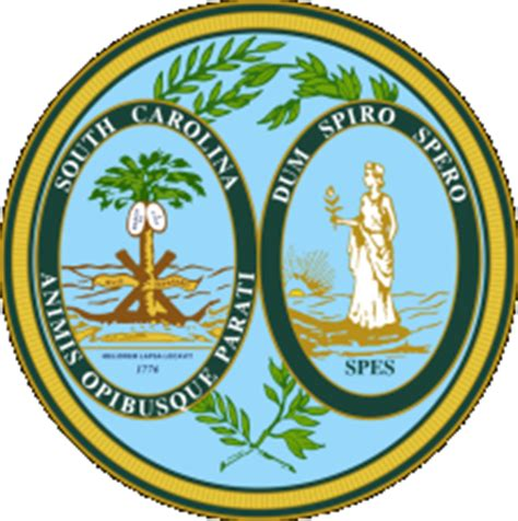 South Carolina Department Of Vital Records Birth Certificate South Carolina Marriage Divorce Records Vital Records