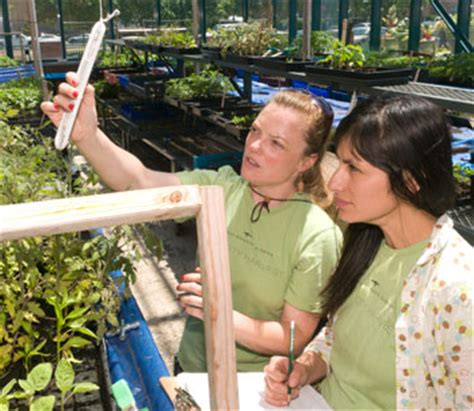 Windy City Harvest Apprenticeship Programs Chicago Chicago Botanic Garden Internship