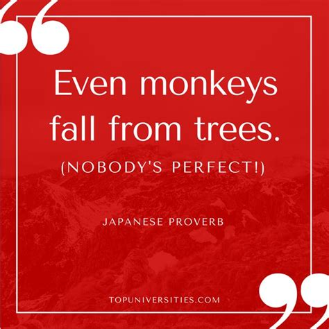 new year monkey proverbs quot even monkeys fall from trees quot japanese proverb