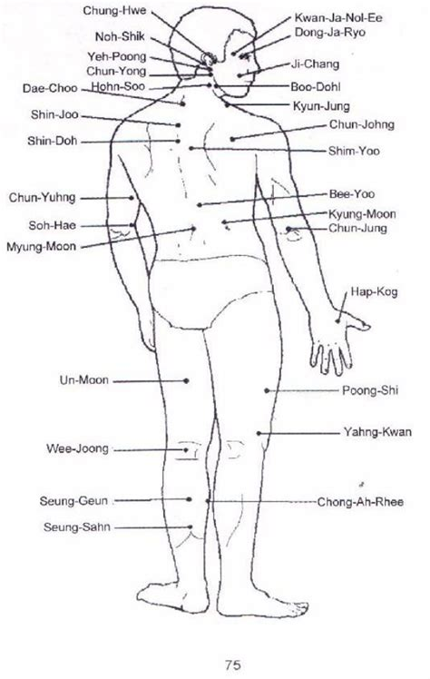 pressure point diagram ppct pressure points diagram related keywords ppct
