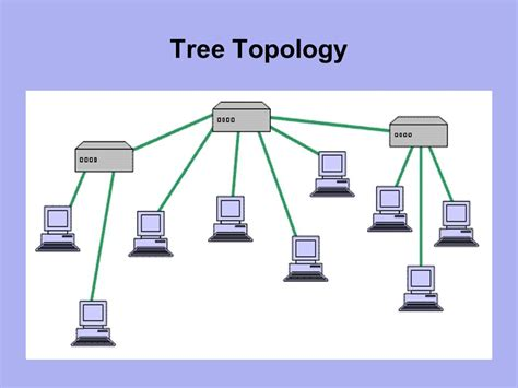 tree topology diagram networking and support systems ppt