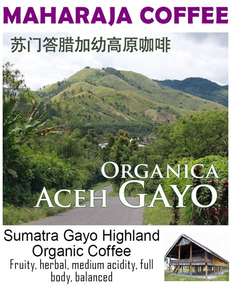 Maharaja Organic Gayo 200g Bubuk maharaja coffee roaster jakarta kopi spesialti specialty coffee of indonesia