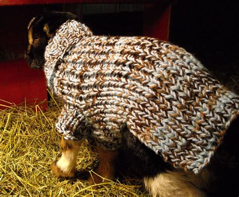 pattern for knitted goat sweater baby goat sweater knit pattern sweater vest