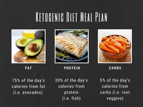ketogenic diet for beginners keto for beginners keto meal plan cookbook keto cooker cookbook keto dessert recipes keto diet books what you need to about the ketogenic diet