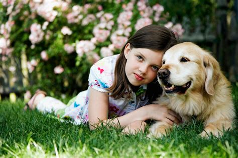 can golden retrievers be protective a list of breeds that are with who s the best