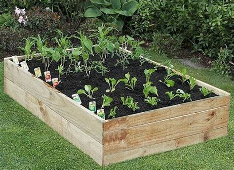 How To Set Up A Vegetable Garden Bed Au Naturale
