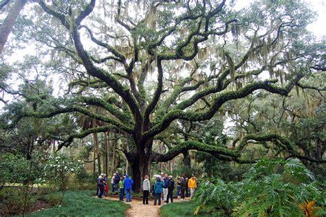State Gardens by Washington Oaks Gardens State Park Palm Coast Florida