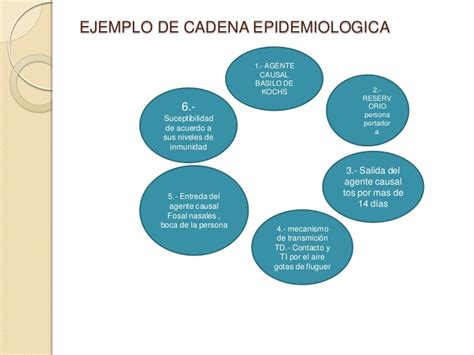 cadena epidemiologica lepra epidemiologia