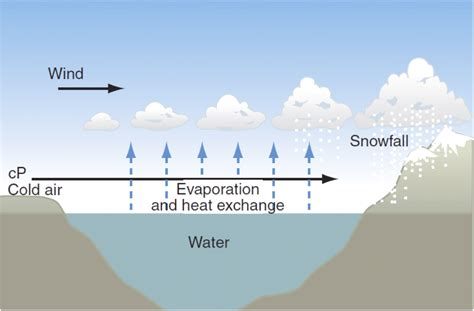 climate change s surprising effect shrinking the curious of lake superior s shrinking cloud