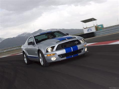 2008 cobra mustang 2008 ford shelby cobra gt500kr