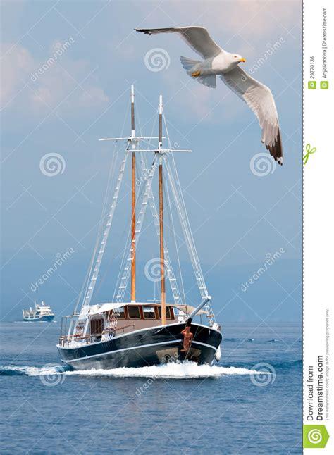 turistica il gabbiano un gabbiano e una barca di passeggero in mare fotografia