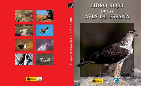 libro aves de espaa libro rojo de las aves de espa 241 a comunidad ism