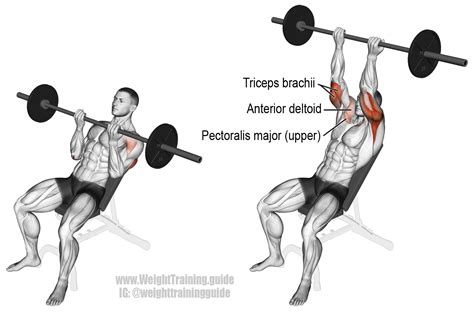 muscles used in incline bench press incline reverse grip barbell bench press exercise guide