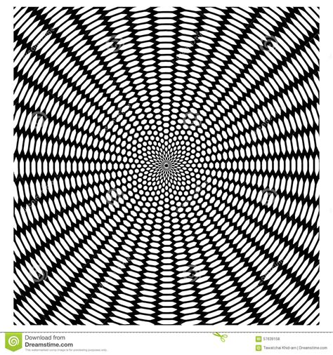 web like pattern vector circular pattern like a spider web black and white