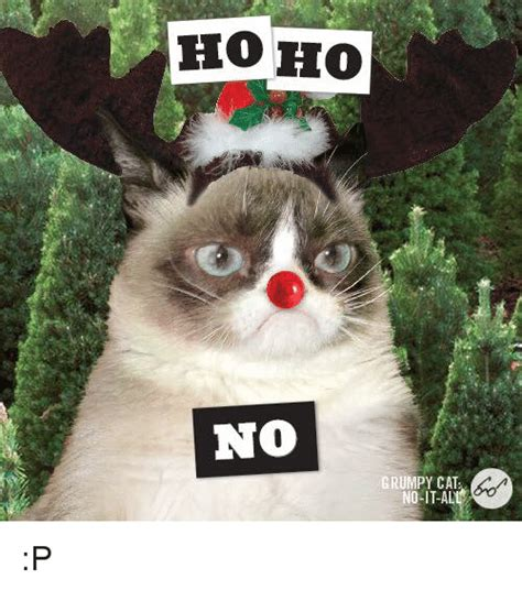 18 extremely funny grumpy cat no memes sayingimages com