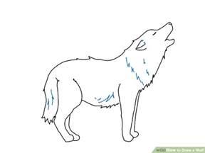4 ways to draw a wolf wikihow