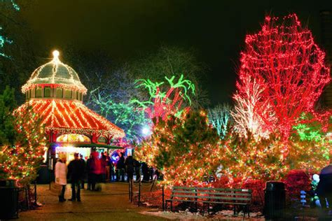 zoo light chicago lights at lincoln park zoo limo services chicago