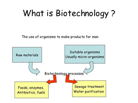 Mba In Biotechnology In Uk by Biotechnology Std Grade