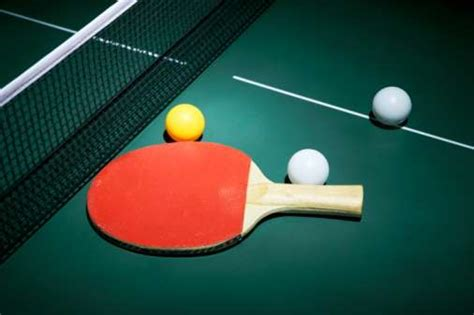 table tennis in a nutshell realbuzz