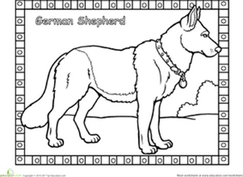 coloring pages of german shepherd puppies german shepherd worksheet education com
