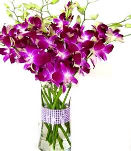 fresh cut flowers tips to keep your fresh cut flowers looking fresh