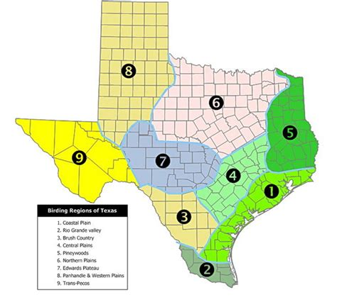 texas coastal plains map image texas ecological regions map