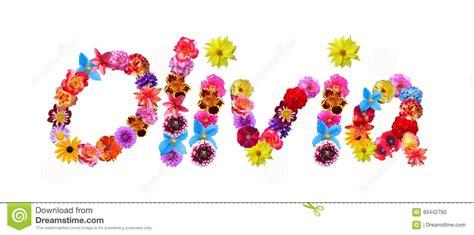 nome dei fiori nome dei fiori illustrazione di stock