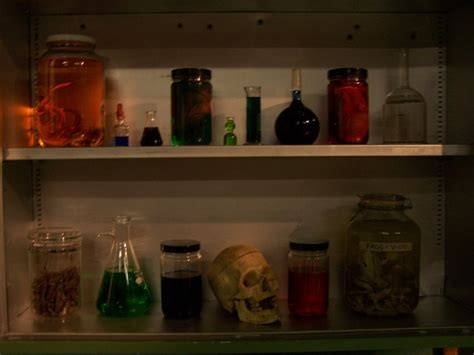 Skull Shelf by Props For Rent Portfolio It Came From Beyond