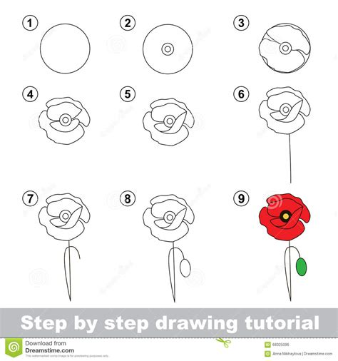 come si disegnano i fiori drawing tutorial how to draw a poppy stock vector