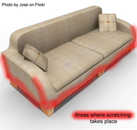 Furniture For People That Is Designed To Be Cat Scratched Stop Cat Scratching Leather Sofa