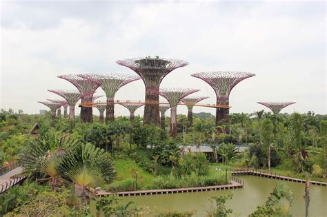 Singapore Gardens By The Bay - gardens by the bay singapore s most popular running spot