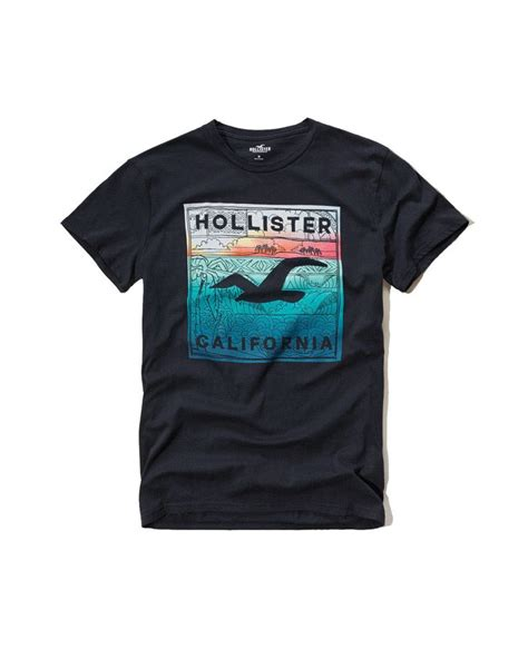 Tshirt Hollister Amn Clothing by Hollister Mens T Shirt Black Style