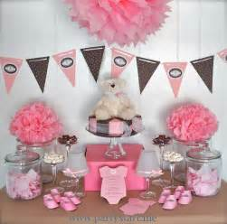 Sugar and spice amp everything nice baby girl baby shower themes