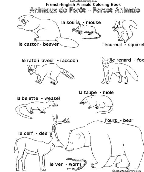 coloring pages with french words french coloring pages animals coloring page cartoon