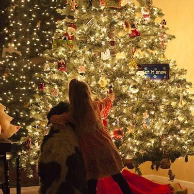 christmas tree photography tips christmas tree tip junkie