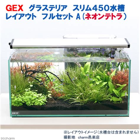 Aquarium Gex 450 Slim Murah chanet rakuten global market 5 points per person only gex glass terrier slim 450 rayoutfrcett
