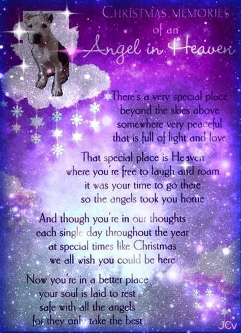 pets in heaven gift for owners 365 best heaven and pet loss images on pets loss quotes and pet quotes