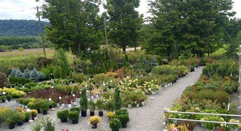 Tioga Gardens by Nursery Tioga Gardens Owego Ny