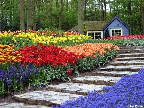 Flowers Garden Wallpapers Hd Wallpapers Images Of Flower Gardens