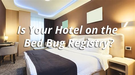bed bug registry hotels 28 images bed bugs hotel what