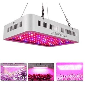 top   led grow lights   reviews buyers