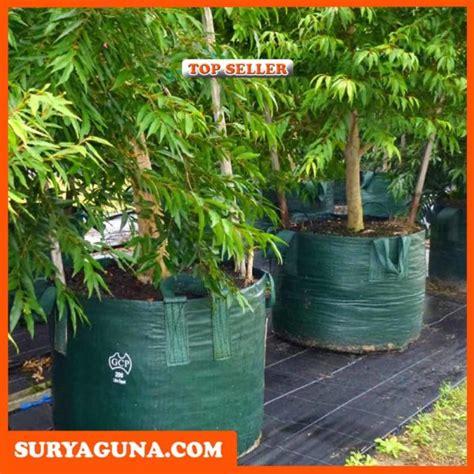 Jual Planter Bag 75 Liter jual planter bag eceran dan grosir suryaguna