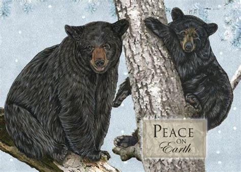 bear christmas cards brown bear christmas cards polar bear christmas cards
